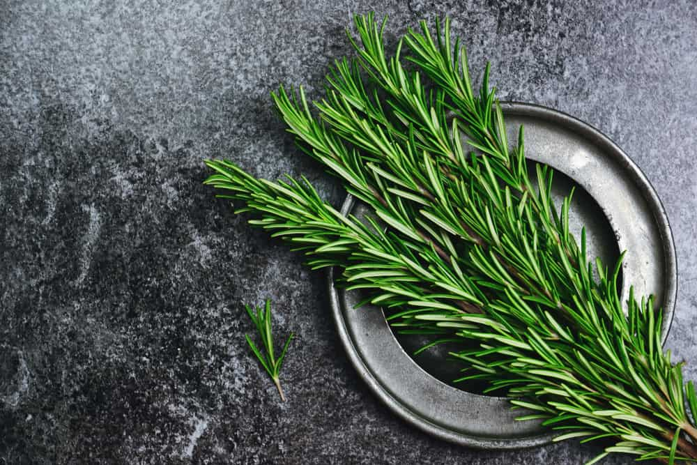 What to use instead of rosemary