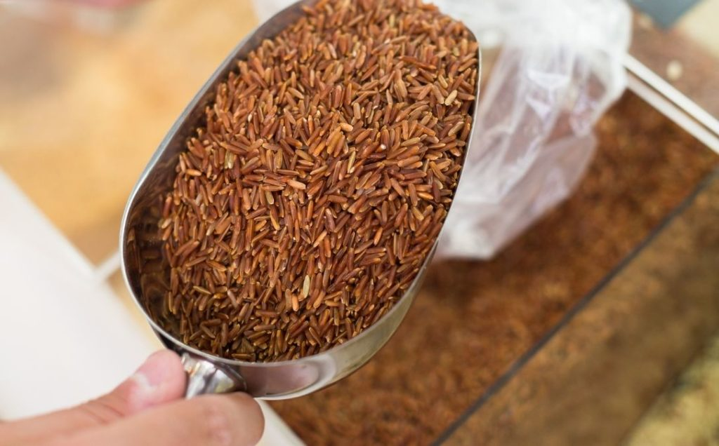 can-you-freeze-brown-rice